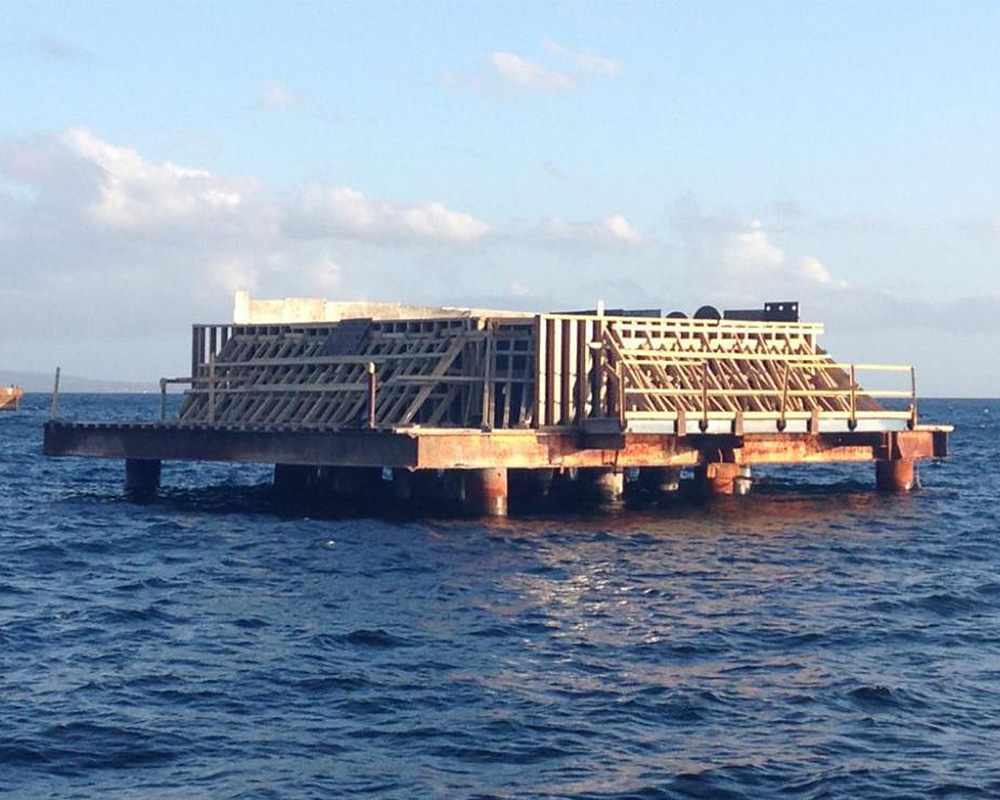 Saint Kitts Deepwater Port Dolphin Construction