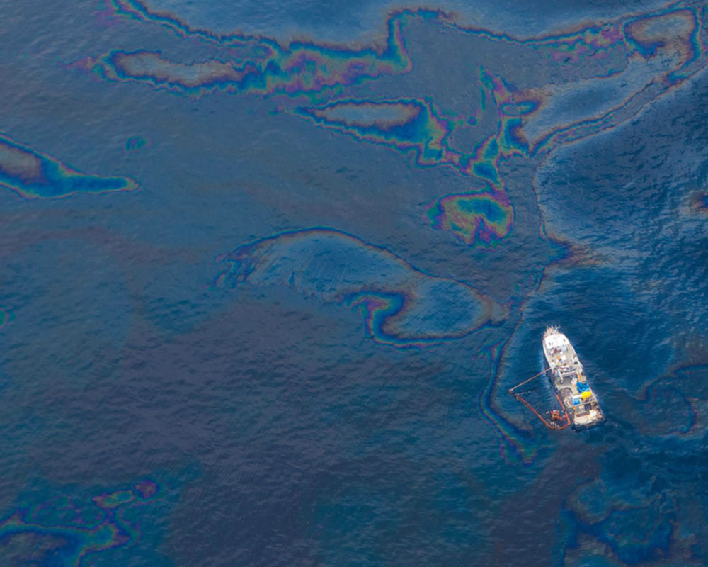 Deepwater Horizon / BP Oil Spill Cleanup Response